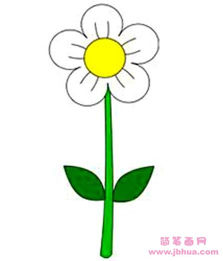 for How to draw a basic flower